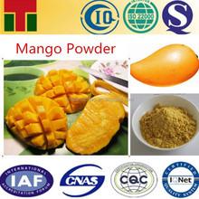 Natural Mango Powder/Fruit Powder