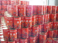 Canned food/vegetables---tomato paste/puree