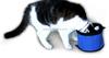 drawstring waterproof Pet cat Travel Bowls