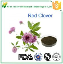 top quality red clover powder extract wholesale price