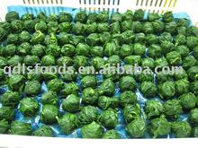 IQF FROZEN SPINACH BALL