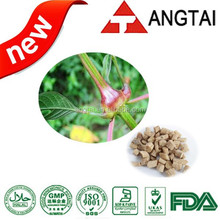 Achyranthes Bidentata Extract Powder(Plant Extract,Achyranthan 20%)