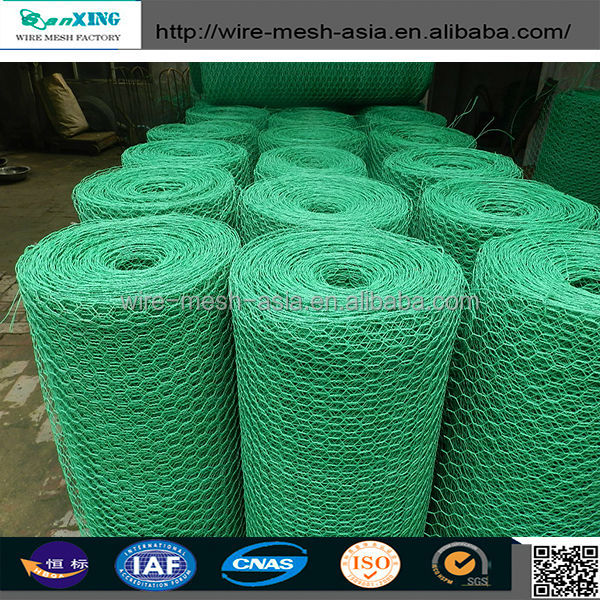 anping hexagonal mesh/double twisted hexagonal wire mesh/hexagonal plastic grille mesh