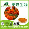 Hybrid f1 orange/gelb/golden Ringelblumen blumen samen für den Anbau