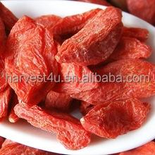 High quality 100% natural dried organic goji berry berries bulk price