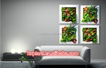 plastic green wall container,vertical wall ,indoor and outdoor green wall