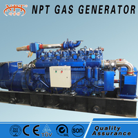 400kW Natural Gas/Biogas Generator with CE and ISO from china manufacture