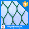 Plastic Netting&Reinforced Plastic Wire Mesh&Plant Support Net