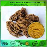 Chinese goldthead rhizome extract / Coptis chinensis P.E.