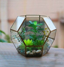 Six edge bronze spherical glass greenhouse fleshy micro landscape vase the most popular color foreign nostalgia style.