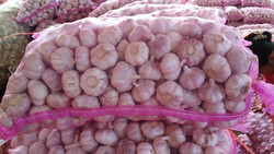 bulk garlic for sale China garlic