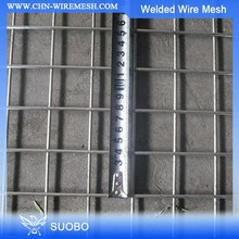 CE Certificated Galvanized And PVC Coated 10 Gauge Galvanized Welded Wire Mesh 3X3 Galvanized Welded Wire Mesh Panel