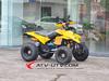 Factory direct selling 250cc quad atv, Chain Drive Transmission System 250CC Quad Bikes