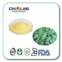 Natural 98% Chrysin Powder Extract