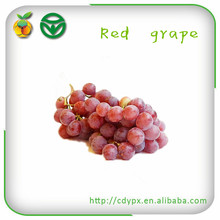 names of red grape fruits price