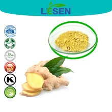 Spicery Herb Powder Real 100% Ginger Extract powder 80-120 mesh