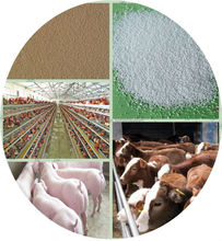 Fish Feed Zinc Bacitracin Powder 10%/animal feed70% COATED ZINC OXIDE