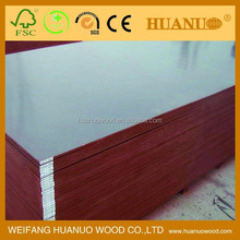 molded soft plywood species