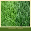 Two tones Soccer Synehtetic Used Field Turf for Sale