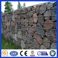 DM hot-dipped galvanzized garden decorated Welded Mesh Wire Mesh Gabion Box Factory In China