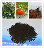 Calcified seaweed fertilizer granular fertilizer amino acid humic acid NPK fertilizer