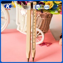 18 cm square calibration log ballpoint pen/Ballpoint pen/promotion pen
