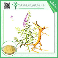 2015 best selling scutellaria baicalensis extract baicalein 85% 90% 95% 98% CAS NO. 491-67-8 free sample