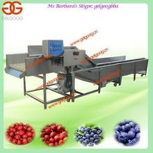 Apple/Peach/Blueberry Washing Machine
