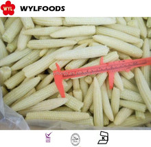 high quality frozen baby corn hot sale