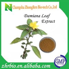 GMP Factory Supply natural damiana leaf extract