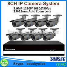 Bessky big promotion 8ch 1080P IP Camera Nvr kit,Auto Electrical System,hot ip camera system