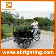 cargo delivery bike world famous new type tricycle cargo bike crepe netherlands
