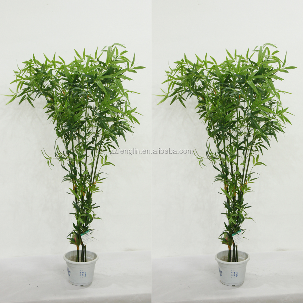 Haute qualit en gros artificielle noir bambou arbres pour for Arbre artificiel grande taille