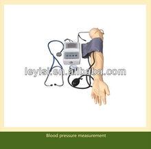 arm blood pressure training simulator medical model