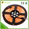 China manufacturer CE ROHS Approval 60LEDS/M Led Light Stripes 12V/24V