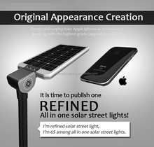 2015 new products smart lighting philips all in one solar light led 30W Ip 67