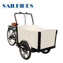 motorized cargo trike for kids