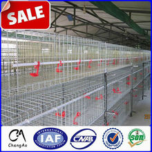 008615131117851 CA Supply Bird Cage / Cheap Chicken Coops for chicken house