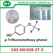 p-Trifluoromethoxy phenol 828-27-3