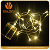 low voltage colorfull led fairy lights for outdoor decoration