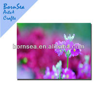 clear purple tiny flowers decorative wall printed canvas