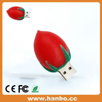 Promotional Gift Silicone Red 2.0 USB Flash Drive 512 MB USB Memory Food