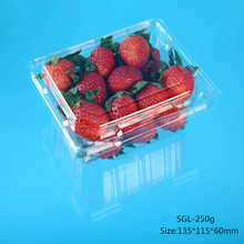 Eco-friendly Biodegradable Plastic Clamshell fruits packaging for strawberry