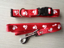 Wholesale Soft Durable Nylon Dog Leash Dog Lead Available in Different Colors