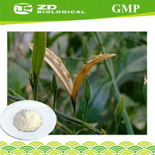 Order From China Direct Andrographis Paniculata Powder Extract for contraceptive patch,,hepatoprotective agents