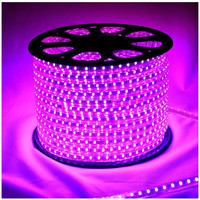 Hot selling cheap factory price waterproof SMD5050 flexible led strip lights 220v