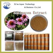 100% Natural Echinacea 100% Natural Echinacea Extract,Echinacea Extract Powder,Echinacea Purpurea Extract Polyphenol 4%