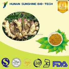 Health Food Herbal Medicine Brownish Yellow Ginger Extract Powder