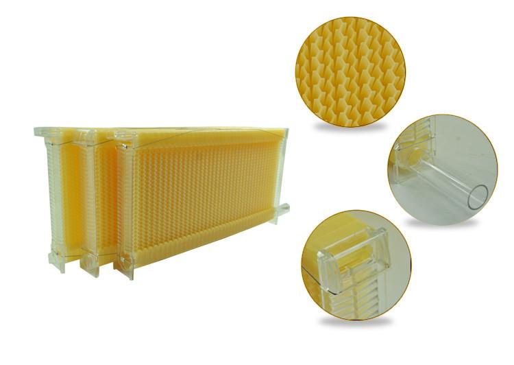 Hive-Plastic-Frame.jpg