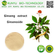 Panax ginseng extract from manufacturer